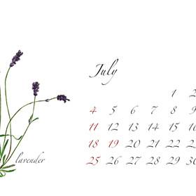 2021年カレンダー7月 はがき