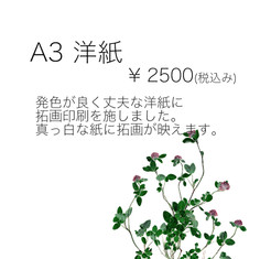 A3 洋紙.jpg