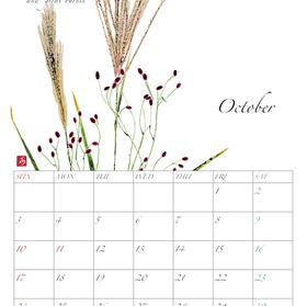 2021年カレンダー10月 A4タテ