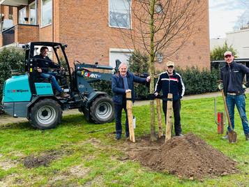 Zorg voor de bomen op de Utrechtse Heuvelrug!