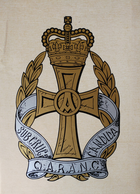 Queen Alexandra's Royal Army Nursing Corps Decal £18