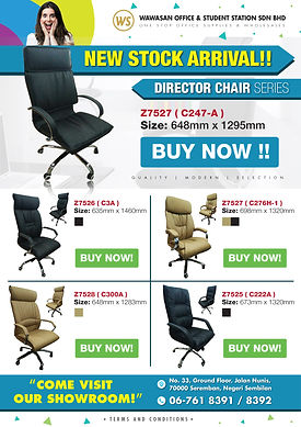 Directo Chair promotion