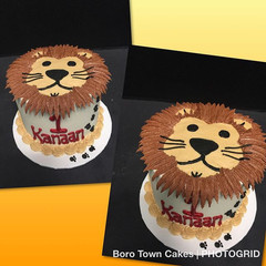 This cute lion came to tell a special on