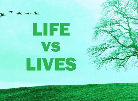 The Difference Between Life and Lives