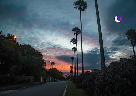 Sunset on Botha Road-2