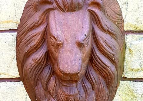Lion Park-2