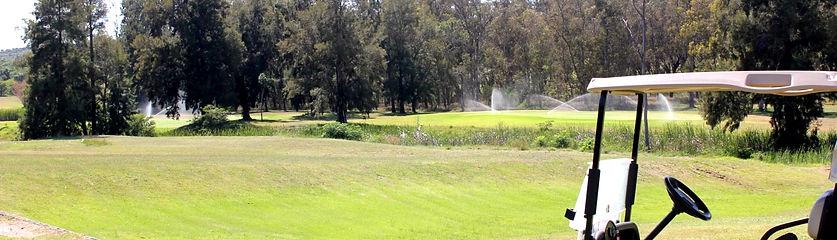king-golf2.jpg