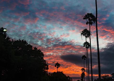 Sunset on Botha Road