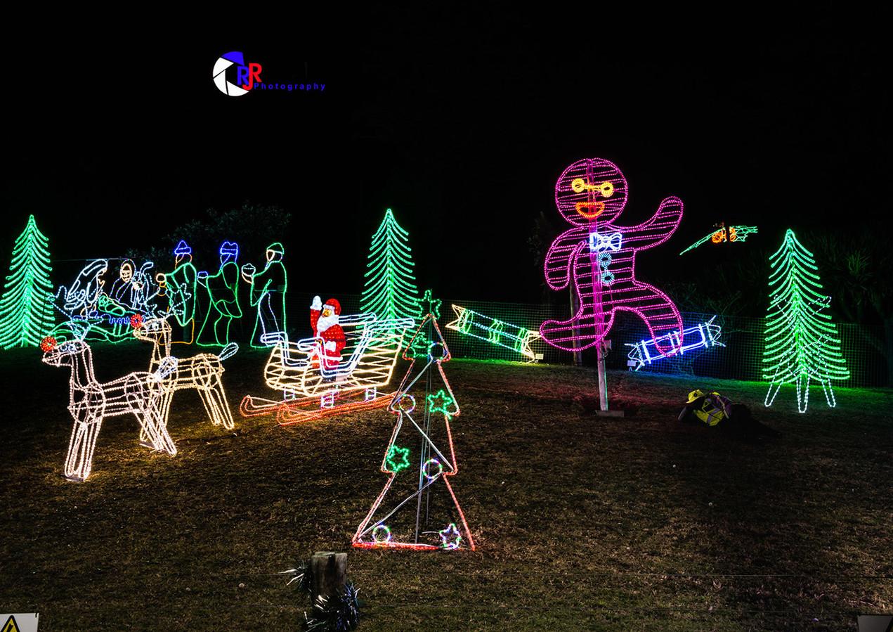 Christmas Lights-3