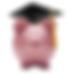 Strategic Wealth Partners - College Fund