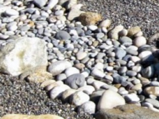 River-Rock-For-Landscaping-Ordinary_edited_edited.png