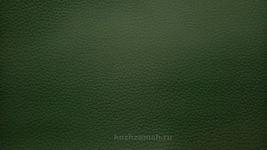 Искусственная кожа Dollaro Dk. Green