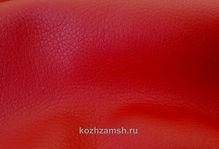 Petro Red1-min.jpg