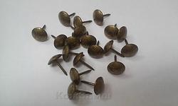 Гвозди  Старое золото 100 1/3 d=9,5mm штифт=12,7мм