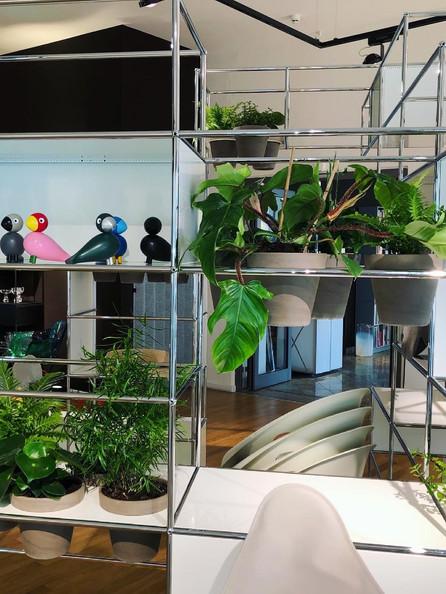 USM Haller Pflanzenwelt