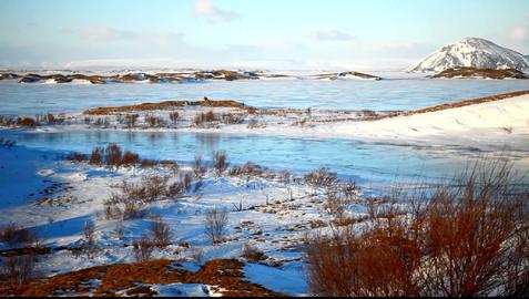 Le lac de Mývatn 1.jpg