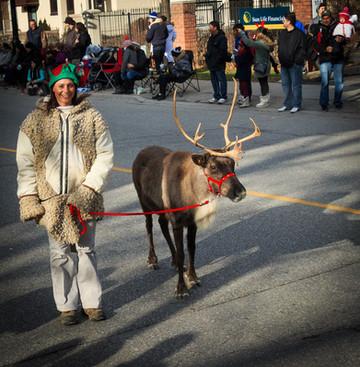 One of Santa's Reindeer (Mississauga Santa Claus Parade, 2015)