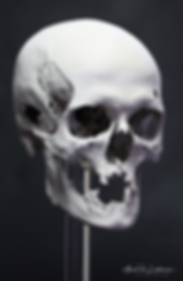 skull-fdm-print_logo.png