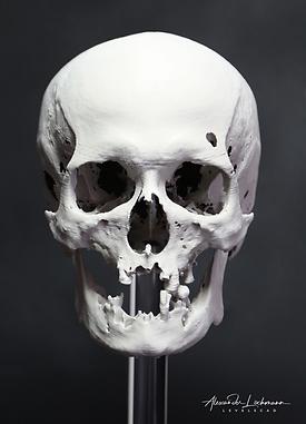 skull-fdm-print2_logo.png