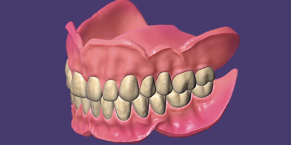 Die digitale Totalprothese mit Exocad DentalCAD