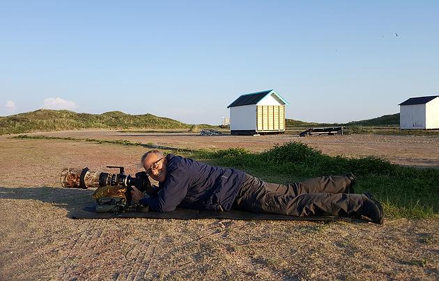Vogelfotografie, Texel, parkeerterrein duinovergang.