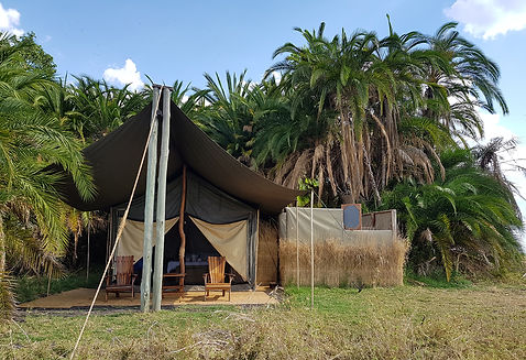Zambia, Kafue NP, Mukambi Safari Lodge; Busang Plains Camp.