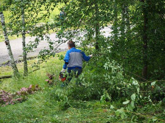 Farní sad - RÁJ - kácení náletových dřevin