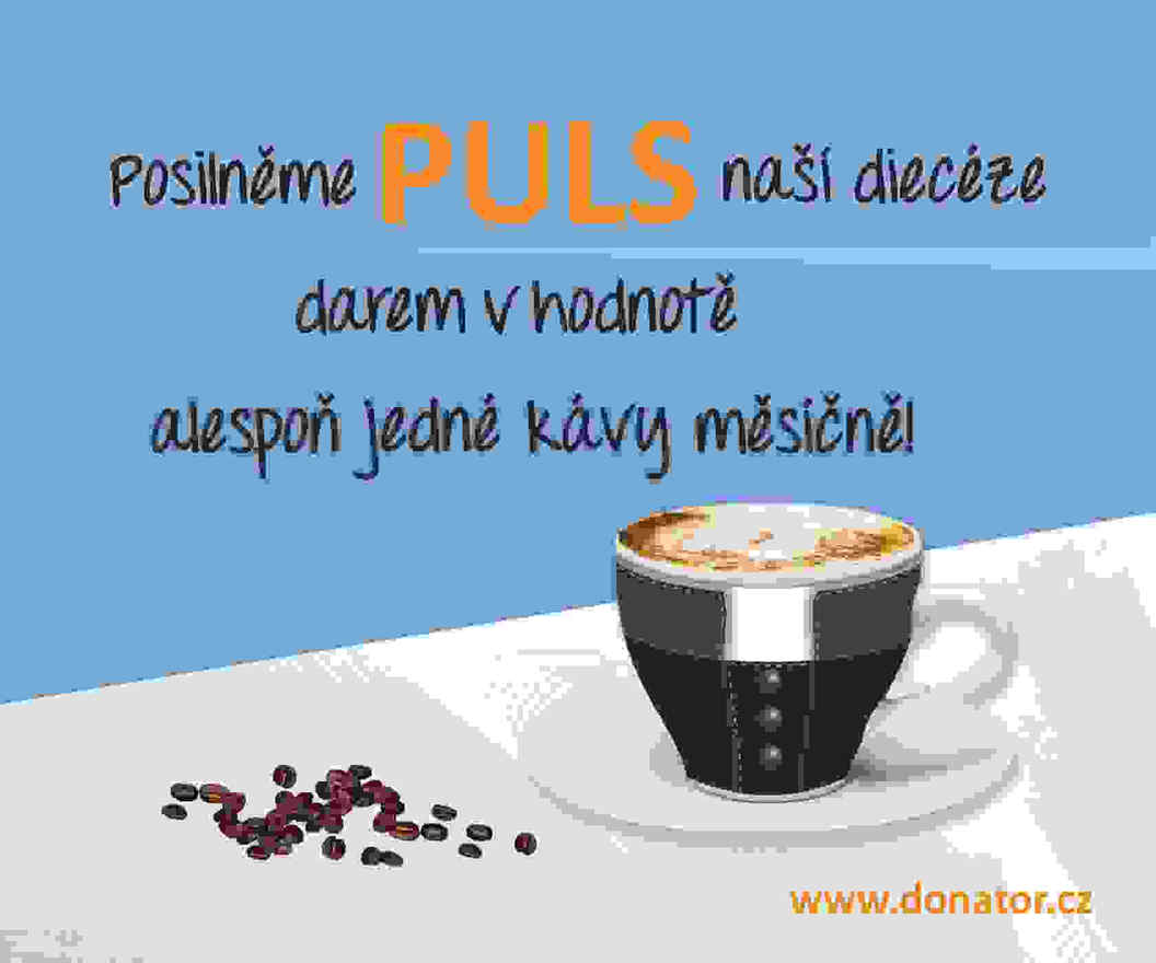 Diecézní fond PULS