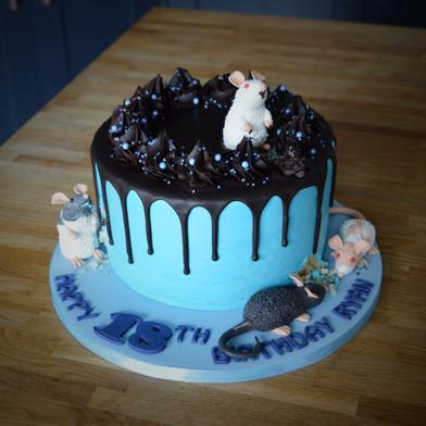 Rat Cake | Kingfisher Bakery, Wiltshire, UK