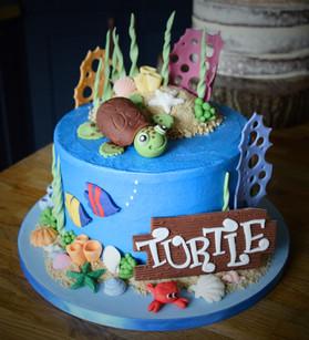 Turtle Birthday Cake | Kingfisher Bakery, Wiltshire, UK