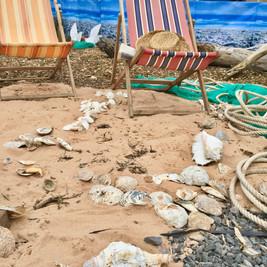 Allotment Beach Garden