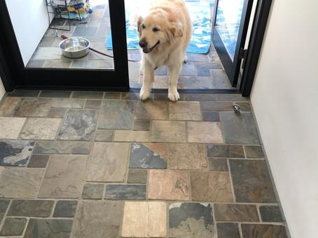 犬と暮らす家にあると便利な空間
