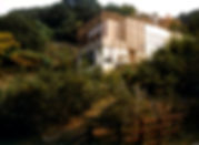 水鳥センター004_edited.jpg