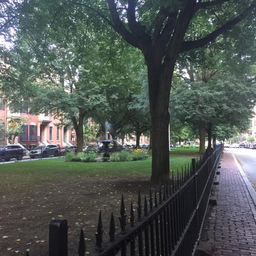 BostonBabs7