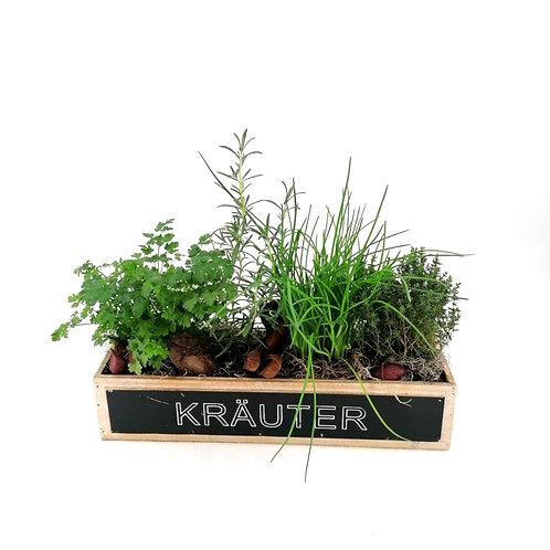 Kräuterkistl gepflanzt