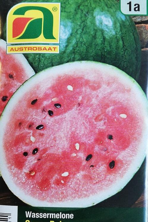 Wassermelonesamen - Sugar Baby
