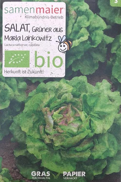 "Salat ""Grüner aus Maria Lankowitz"""