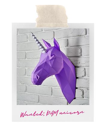 DAM unicorn.png