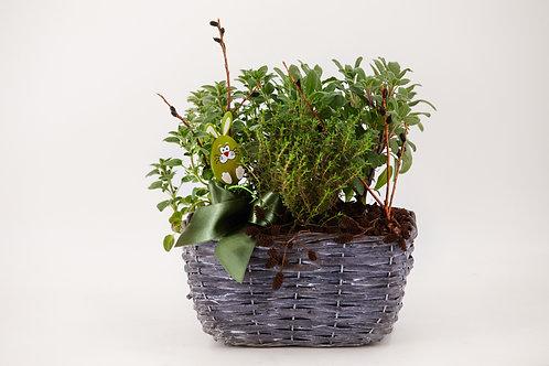 Kräuterkörbchen gepflanzt
