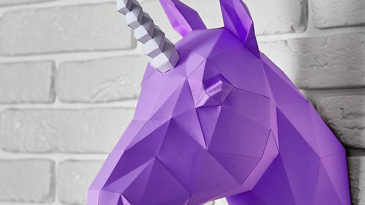 DAM unicorn cover.png