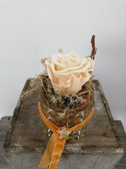 Stabilisierte Rose im Glas