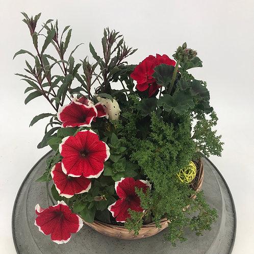 Sommerlicher Pflanzkorb in rot