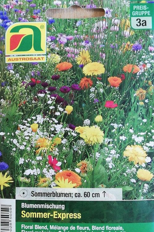 Sommer-Express  - Blumensamenmischung