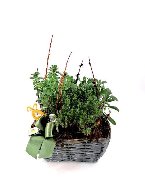 Kräuterkorb gepflanzt