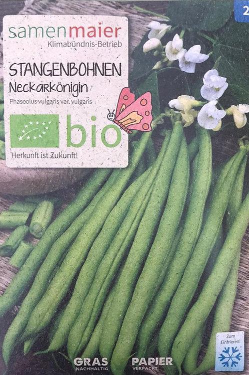 """Stangenbohnen """"Neckarkönigin"""""""