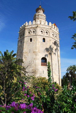 Andaluce and Costa del Sol Tour