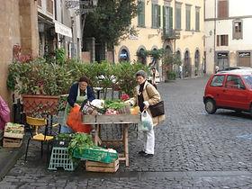 Italy Food & Wine Vacations