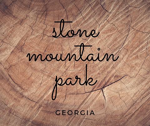 Field Trip Stone Mountain Park