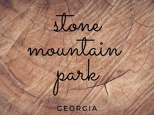 Stone Mountain Park Local Scavenger Hunts