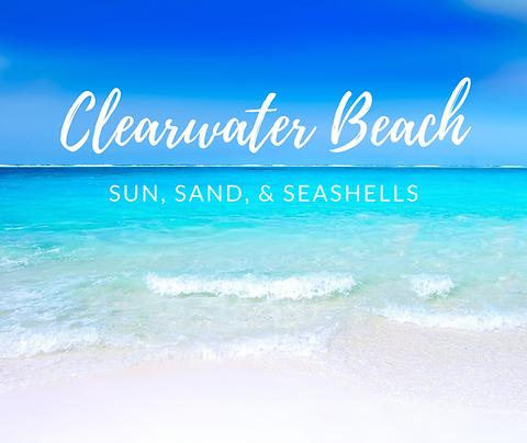 Field Trip Clearwater Beach